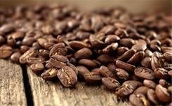 Курсы для владельцев кафе: «Кафе под ключ»